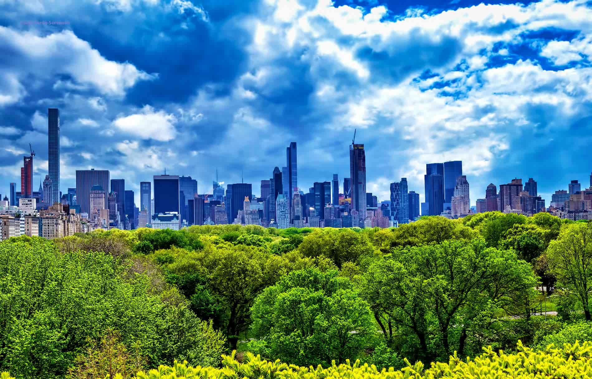 מרץ בניו יורק